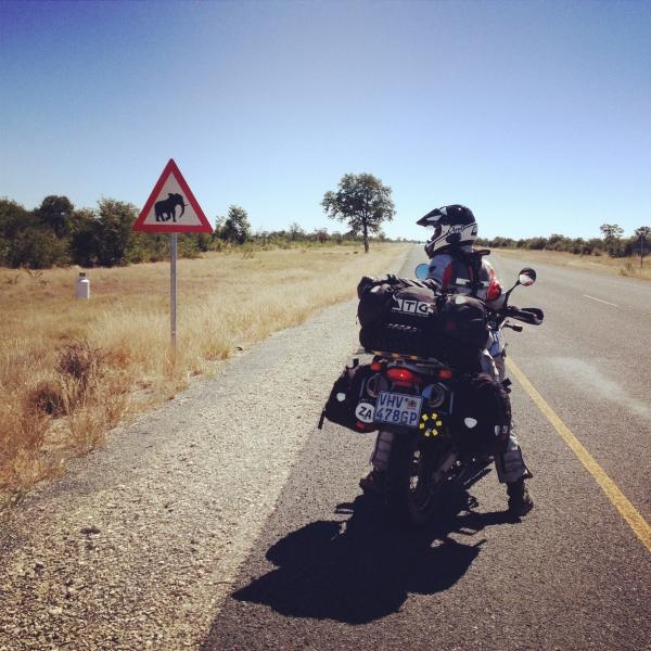Beware_elephants_road_sign