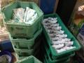 IMG_7356Auswahl pics Kenya
